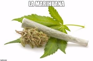 sobre el abuso de la marihuana