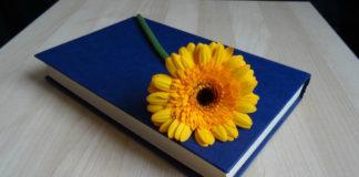 Libros Sobre Las Adicciones