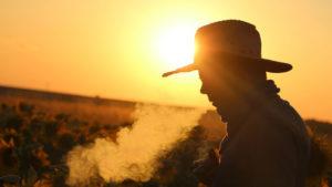 ¡Desterrar tu adicción al tabaco para siempre!